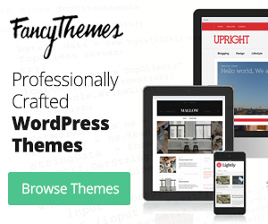 FancyThemes