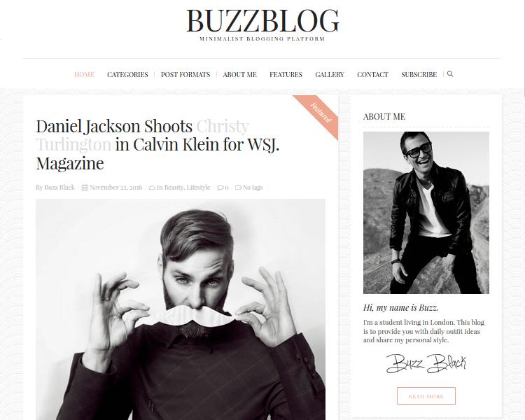 Best WordPress Blogging Themes - BuzzBlog