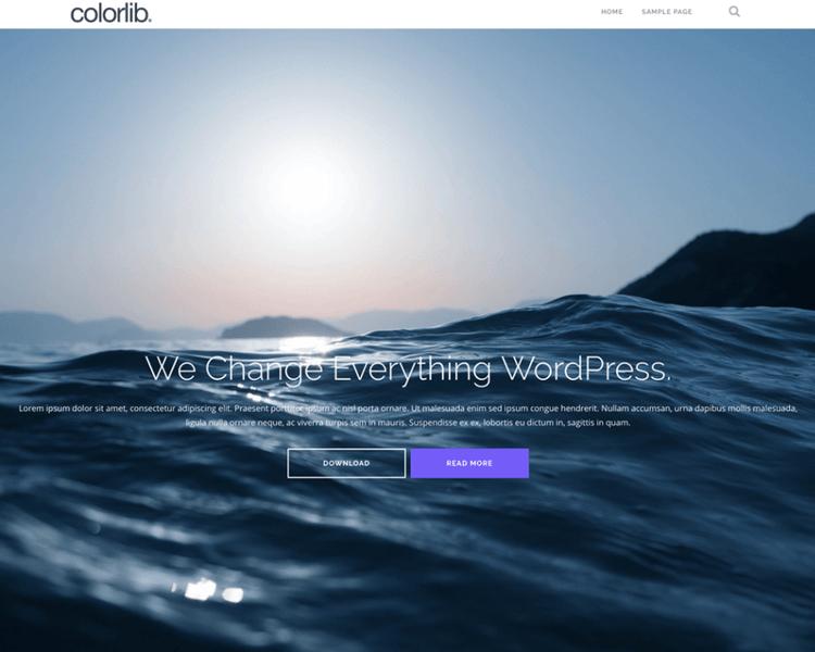 Best WordPress Blogging Themes - Shapely